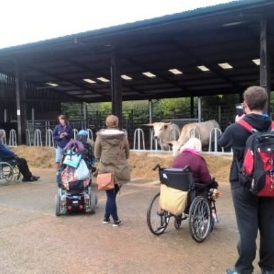 Finding Out About Accessible Wimpole Home Farm